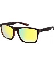 Dirty Dog 53539 sopka sluneční brýle